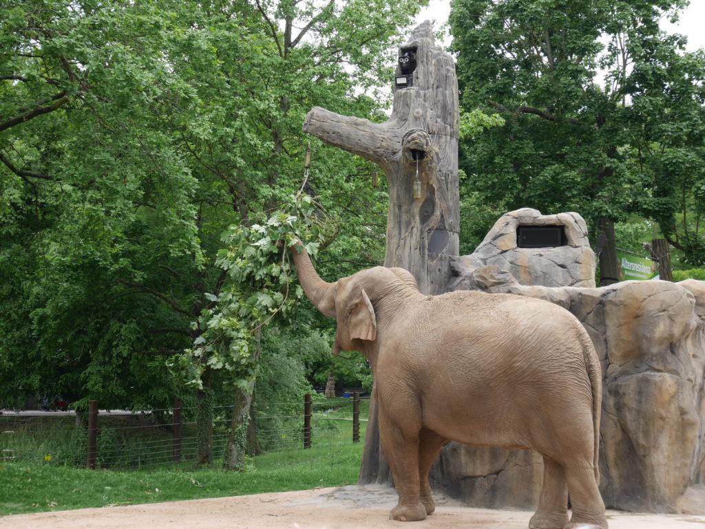 Zoo Karlruhe